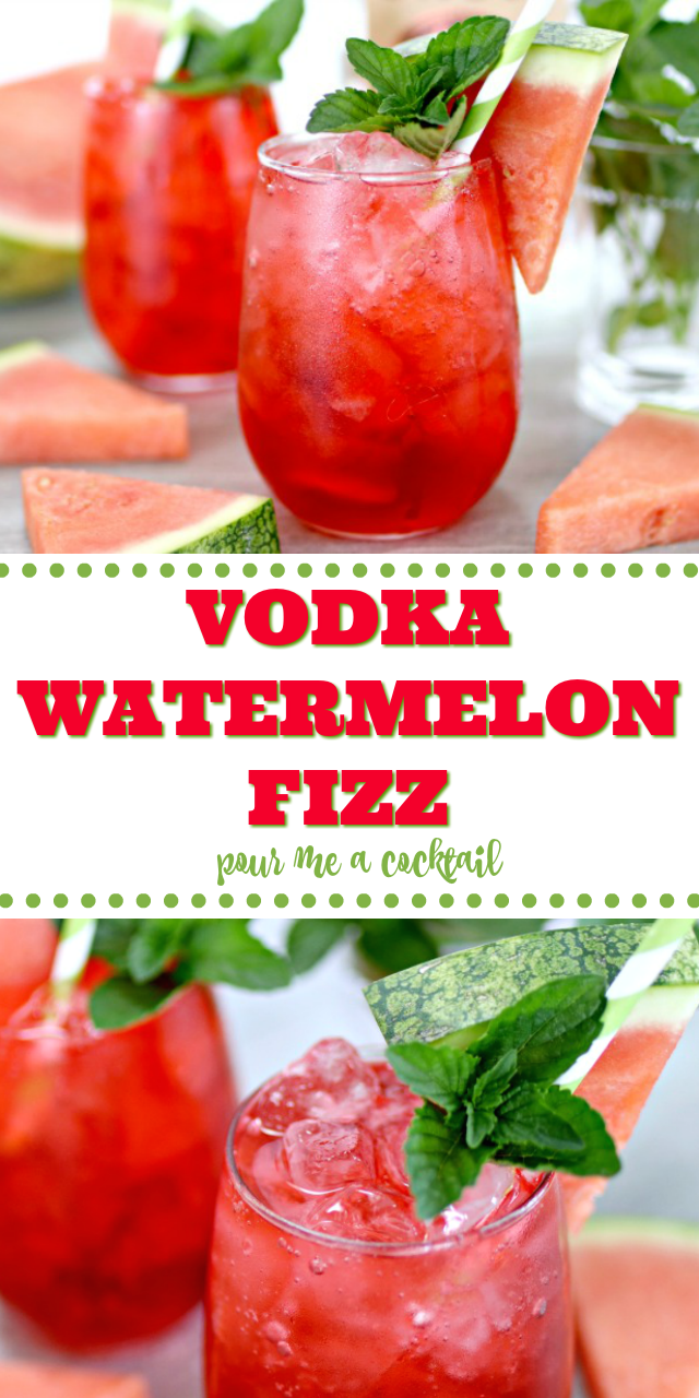 watermelon vodka fizz cocktails with mint