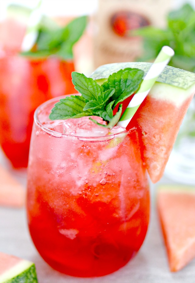 Watermelon Vodka Fizz Cocktail